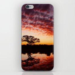 Tau Sunset iPhone Skin