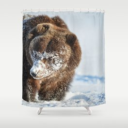 Alaskan Grizzly in Snow - 2 Shower Curtain