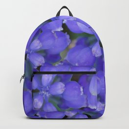 Muscari armeniacum(Armenian grape hyacinth) Backpack