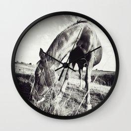 Horse Grazing Wall Clock