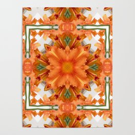 Abstract kaleidoscope of a beautiful day lily Poster