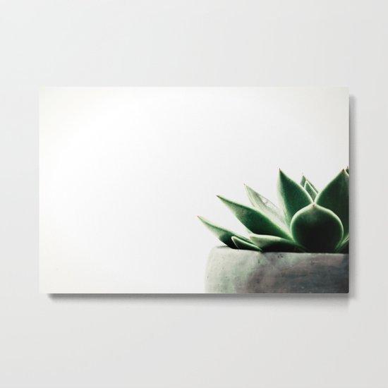 Simply Succulent Metal Print