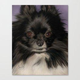 Pomeranian Painting Portrait Canvas Print