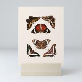 Vintage Butterfly Chart III Mini Art Print