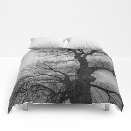 Nature Photography Weeping Willow | Lungs of the Earth | Black and White Comforters