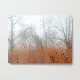 The Marsh photography Metal Print