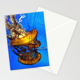 Jellyfishing Stationery Cards