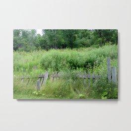 Fence Overgrown Metal Print