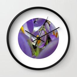 little crocus bloom IX Wall Clock