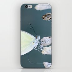 Chrysalis iPhone & iPod Skin