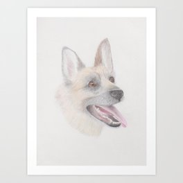Dog drawing in coloured pencil Art Print