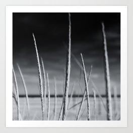Brigantine Horizon Art Print