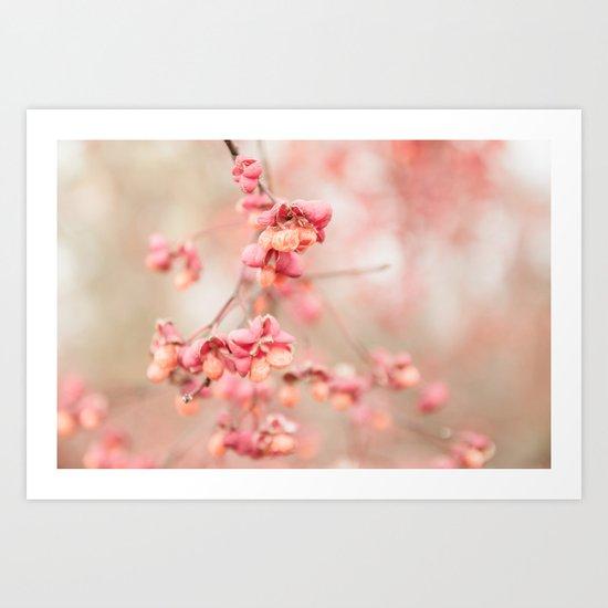 soft fall blossom Art Print