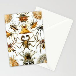 Haeckel Illustration Spiders Stationery Cards