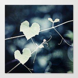 Heart Love Nature Photography, Hearts Botanical Print, Navy Blue Green Photograph, Bedroom Photo Canvas Print