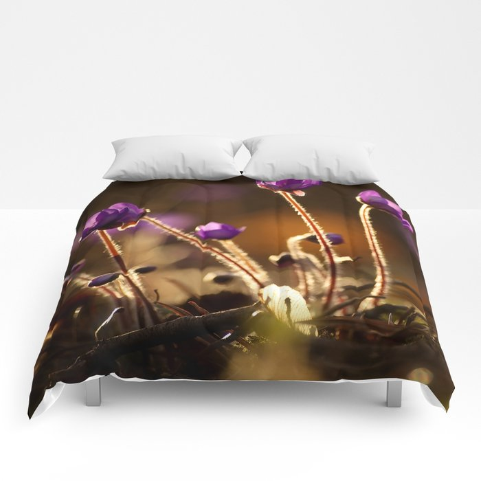 Hepaticas in The Glare Of The Sun #decor #society6 Comforters