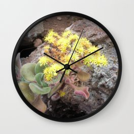 Blossoms of Tenerife Wall Clock