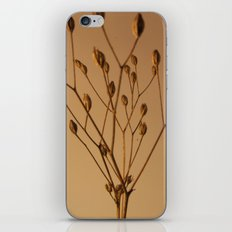 Florales · plant end 3 iPhone & iPod Skin