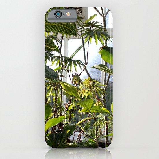 Glass House Jungle  iPhone & iPod Case