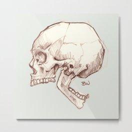 Curiosity Skull Metal Print