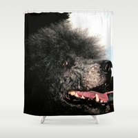 poodle Shower Curtains featuring poodle by Richard PJ Lambert