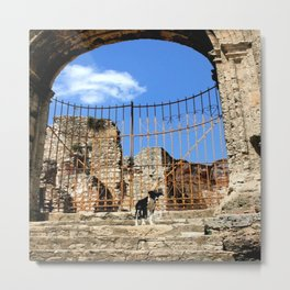 Lonely Dog Metal Print