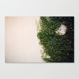 Ivy-covered clock Canvas Print