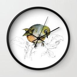Sylvereye - Waxeye bird Wall Clock