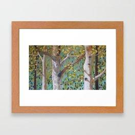 Fullness of Joy Framed Art Print