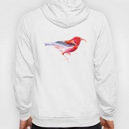 Iwi Bird Hoody