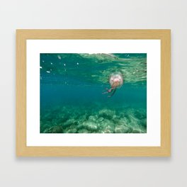 Italian Jelly Framed Art Print