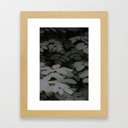 Leaves in the dark Framed Art Print