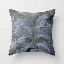Silver Ragwort Leaf Throw Pillow