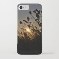 sublime iPhone & iPod Cases featuring Sublime by Dorothy Pinder