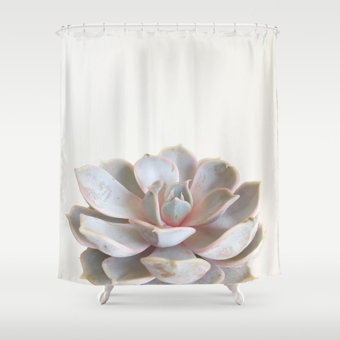 Pink Succulent Shower Curtain By Cassiabeck