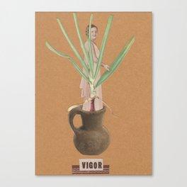 vigor Canvas Print