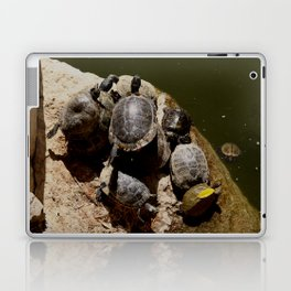Crowded beach Turtles sunbathing Laptop & iPad Skin