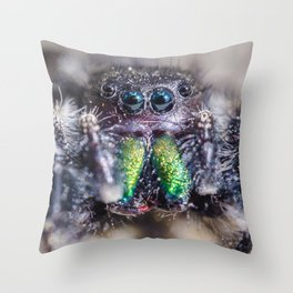 lil' Hairy Face, Jumping Spider Macro Photograph Throw Pillow