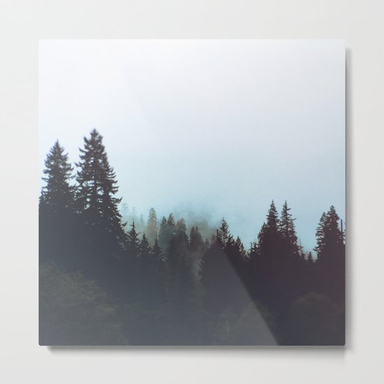 Washington Woodlands Metal Print