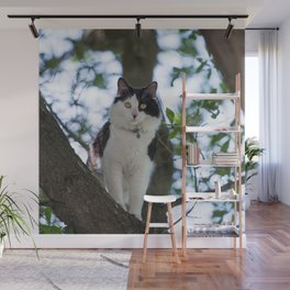 Cat in a Tree Wall Mural