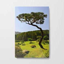 Bansai Tree Metal Print