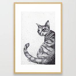 Tazzy Cat Framed Art Print