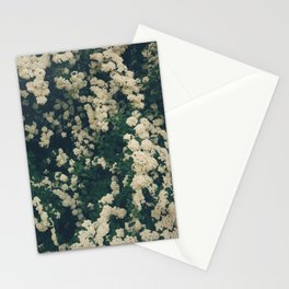 Bridal Photosynthesis  Stationery Cards