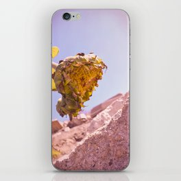 Hanging Her Head - California Coastal Sunflower iPhone Skin
