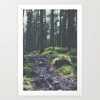 Path less traveled - Nydoa Photography  Art Print