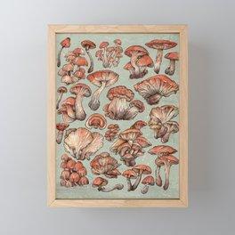 A Series of Mushrooms Framed Mini Art Print