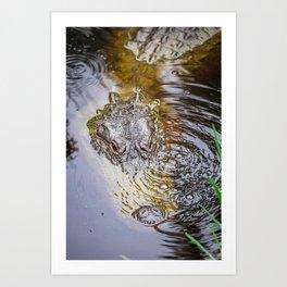 Gator Blowing Bubbles Art Print