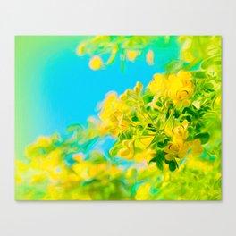Springtime Cassia Tree Canvas Print