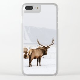 Elk Wintering in Jackson Hole Wyoming Clear iPhone Case