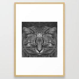 The big Kahuna - My big Ginger Cat Framed Art Print